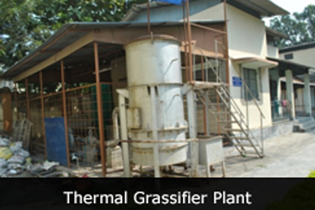 thermal grassifier plant